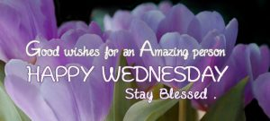 Wednesday Good Morning Images Photo Wallpaper HD Download