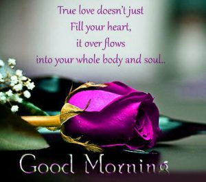 Good Morning Emotional Images Photo HD Download