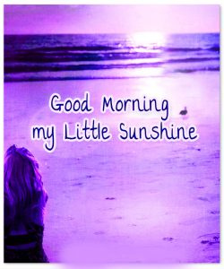 Good Morning Sunshine Images Wallpaper Pics Download