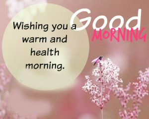 Good Morning Sunshine Images Pictures Wallpaper Download