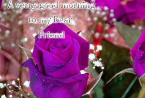 Good Morning Dear Friends Images Wallpaper Photo HD Download