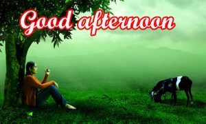 Good Afternoon Images Wallpaper Photo Pics hd