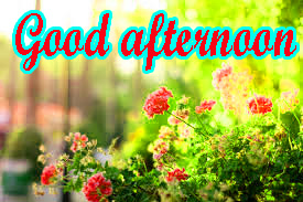 Good Afternoon Images Pics Wallpaper Download