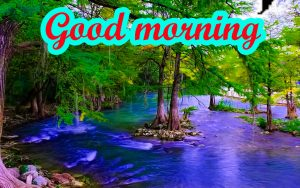 Good Morning Gorgeous images Pics Photo HD Download