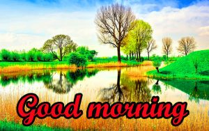 Good Morning Gorgeous images Photo Pics HD