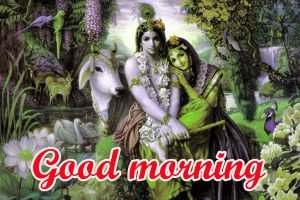 God Radha Krishna good morning Images Pics Download