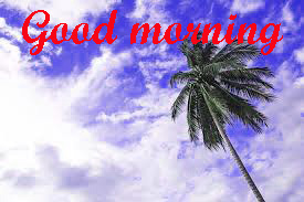 Special Good Morning Images Wallpaper