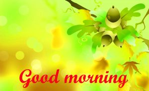Special Good Morning Images Pictures HD