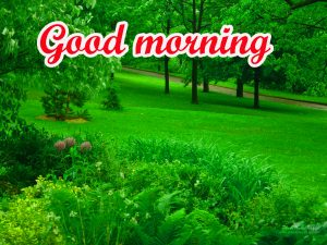 Spring Good Morning Images Pics Photo