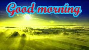 Good Morning Images Pics Wallpaper Download