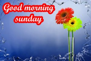 Sunday Good Morning Images Pics HD Download