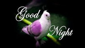 Good Night Wishes Images Photo for Whatsaap