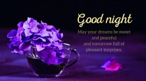 Good Night Message Images Photo Picture Download