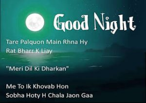 Hindi Good Night Message Images Pics Download