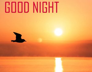 Friends Good Night Photo pictures Download