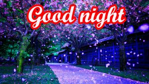 Beautiful Good Night Images Wallpaper Download