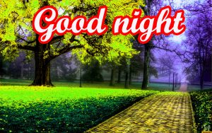Beautiful Good Night Images Pictures HD Download
