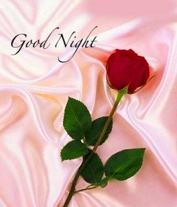 new good night images Photo Download For Whatsaap