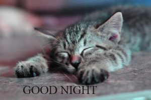 gd night images Photo Pics hd Download