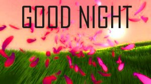 Best Good Night Images Pictures Wallpaper Pictures Download for Whatsapp