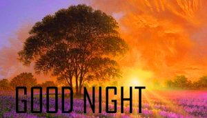 Good Night Images Pictures For Whatsaap Free Download