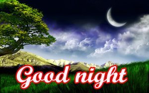 Free Good Night Photos Wallpaper Pictures Download