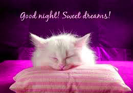 Funny Good Night Images Pictures HD Download