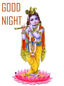 God Lord Krishna Good Night Images Free Download In hd For Whatsapp