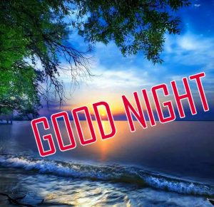 232 Beautiful Good Night Images Photo Pictures Hd For Friends