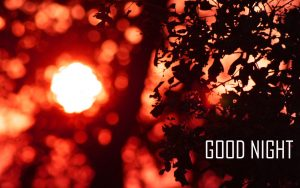 Free HD Good Night Wallpaper Photo Pictures Download
