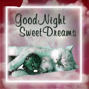 Latest Good Night Images Photo Pics Free Download