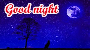 Gud Night Images Wallpaper Photo Pics HD Download