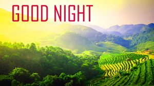 Good Night Wallpaper Pictures For Friends