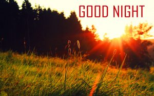 Top Good Night Images Photo Pictures Free Download