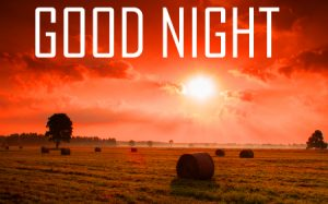 Best Good Night Images Pictures Download