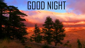 Good Night Photo Pics Free Download