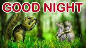 Funny Good Night Images Photo Wallpaper Pics Download