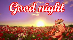Her Good Night Images Photo HD Download