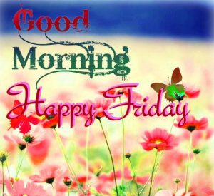 Friday Good Morning Images Wallpaper Photo Download