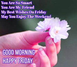 Friday Good Morning Images Wallpaper Photo Downlaod