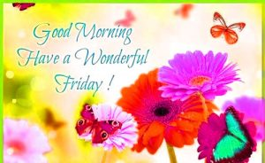 Friday Good Morning Images Photo Wallpaper Download