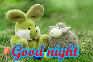 Funny Good Night Images Photo Free Download