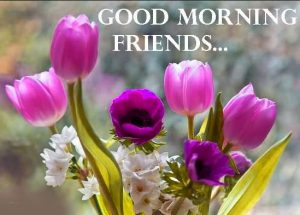 Best friends Good Morning Images Photo Pics Download