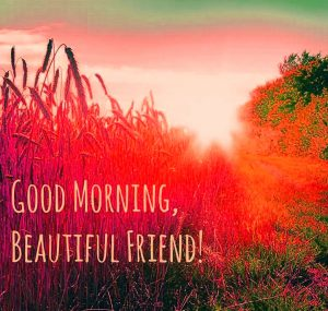 Best friends Good Morning Images Pics Download