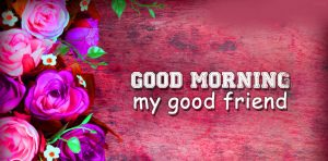 Best friends Good Morning Pictures Free Download