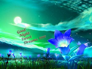Cute Good Night Images Photo HD Download
