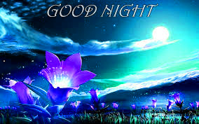 Cute Good Night Images Pictures Download