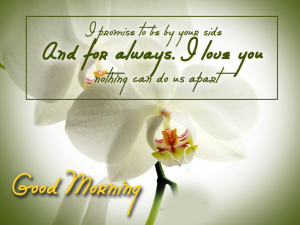 Good Morning I love you Images Photo Pics HD Download