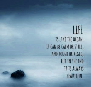 Best Life Quotes Images Photo Pics HD Download