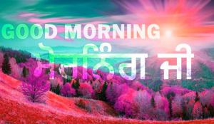 Punjabi Good Morning Images Photo Pics Wallpaper Pictures HD Download